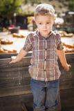 Little Boy die zich tegen Oude Houten Wagen bij Pompoenflard bevinden Stock Foto