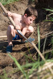 Little boy digs a hole Stock Images
