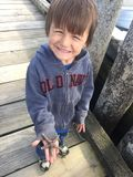 Little boy discovering starfish Deep Bay, BC stock photography