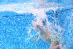 Little boy after diving into a swimming pool stock photography