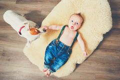 Little boy and dog at home Royalty Free Stock Photo