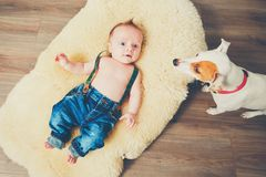 Little boy and dog at home Stock Photography