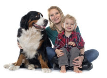 Little boy, dog and mother Stock Photo