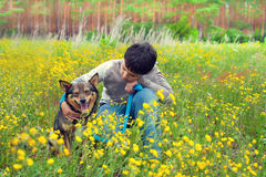Little boy with dog. Little boy siting with his dog on the flower meadow Royalty Free Stock Image