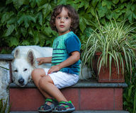 Little boy with a dog Royalty Free Stock Image