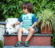 Little boy with a dog Stock Photography