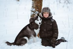 Little boy with the dog stock image