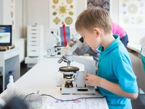 Little boy doing biochemistry research at the lab. A boy of European appearance in a T-shirt conducts biological experiments with royalty free stock images