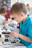 Little boy doing biochemistry research at the lab. A boy of European appearance in a blue T-shirt stock photography