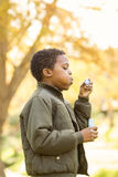 Little boy doing some bubbles. On an autumns day Stock Images
