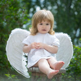 Little boy dressed as angel. Adorable boy in angel costume. Cute little cupid with white wings Royalty Free Stock Images