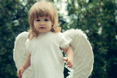 Little boy dressed as angel Stock Images