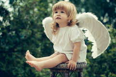 Little boy dressed as angel. Little angel landed on the chair. Cute boy is the angel costume Royalty Free Stock Images