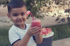 Little boy drinking fresh lemonade with piece of watermelon at the garden. Picnic time. Summer holidays. royalty free stock images