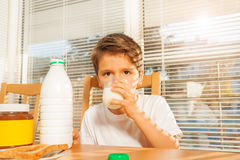 Little boy drinking milk at breakfast in kitchen Royalty Free Stock Photography