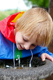 The little boy drinking water in park Stock Image