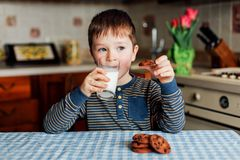 A little boy drinks milk and eats cookies in the kitchen in the morning. A little boy is sitting in the kitchen at the table, holding a glass of milk and stock image