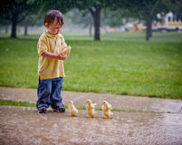 Little Boy with Ducklings. Little Boy wearing Yellow Shirt with Ducklings in the Rain Stock Photography