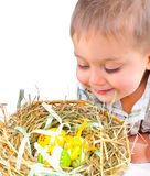 Little boy with easter eggs in basket Stock Image