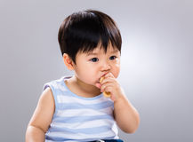 Little boy eat food Royalty Free Stock Photo