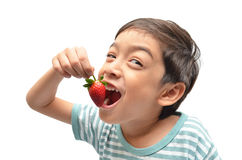 Little boy eat strawberry. On white background Stock Photography