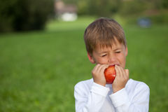 Little boy eating an apple Royalty Free Stock Photography