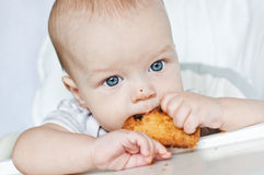 Little boy eating biscuit Royalty Free Stock Image