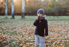 Little boy eating candy Stock Image