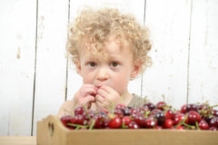 A little  boy eating cherries Royalty Free Stock Photos