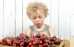A little boy eating cherries Stock Photography