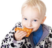 Little boy eating a cookie Stock Images