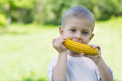 Little boy eating corn outdoors Stock Photo