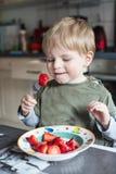 Little boy eating fresh strawberries Royalty Free Stock Image
