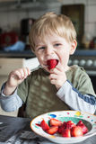 Little boy eating fresh strawberries Royalty Free Stock Images
