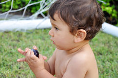 Little boy eating grape on grass Royalty Free Stock Photography