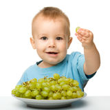 Little boy is eating grapes Royalty Free Stock Photo
