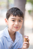 Little boy eating ice cream cone strawberry favor summer time Stock Images