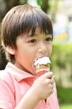 Little boy eating icecream summer time Royalty Free Stock Images