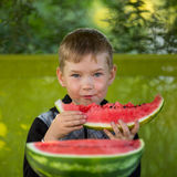 Little boy eating a large watermelon. Pleasure. Stock Image
