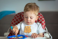 Little boy eating lunch Stock Photography