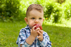 Little boy eating red apple Stock Photo