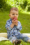 Little boy eating red apple Stock Photography