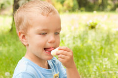 Little boy eating a snack. Stock Photos