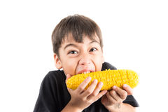 Little boy eating steamed corn on white background Royalty Free Stock Photos