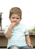 Little boy eating strawberry Stock Images