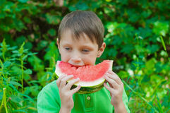 Little boy eating watermelon in the summer Stock Images