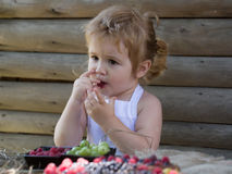 Little boy eats red raspberry Stock Image