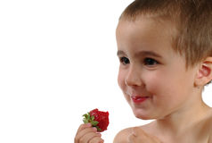 Little boy eats strawberry Royalty Free Stock Photography
