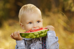 Little boy eats watermelon Royalty Free Stock Image