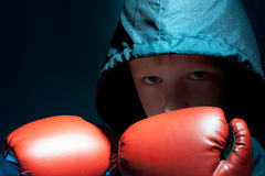 The little boy is engaged in boxing Stock Photos